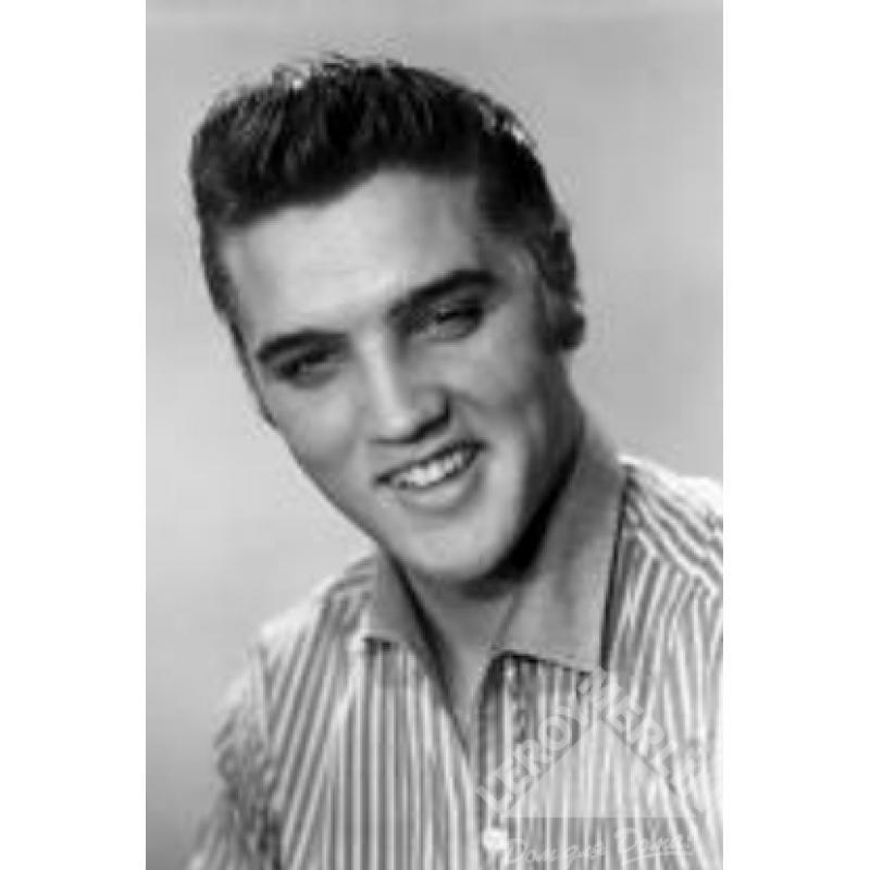 Декор Elvis Presley 25x40 см