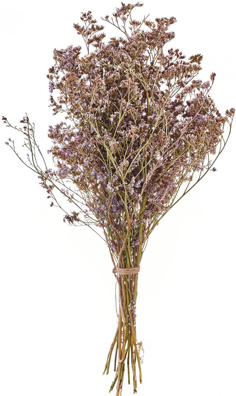 Букет из сухоцветов Лимониум