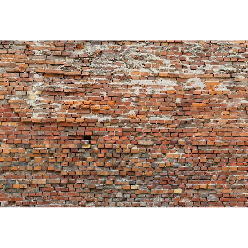 Фотопанно флизелиновое «Bricklane» 368х248 см