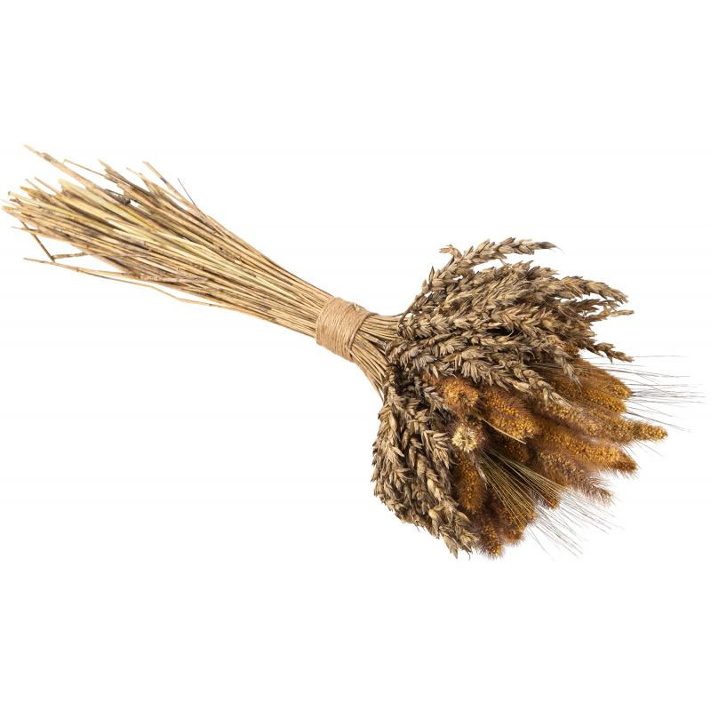 Букет из сухоцветов Пшеница и чумиза