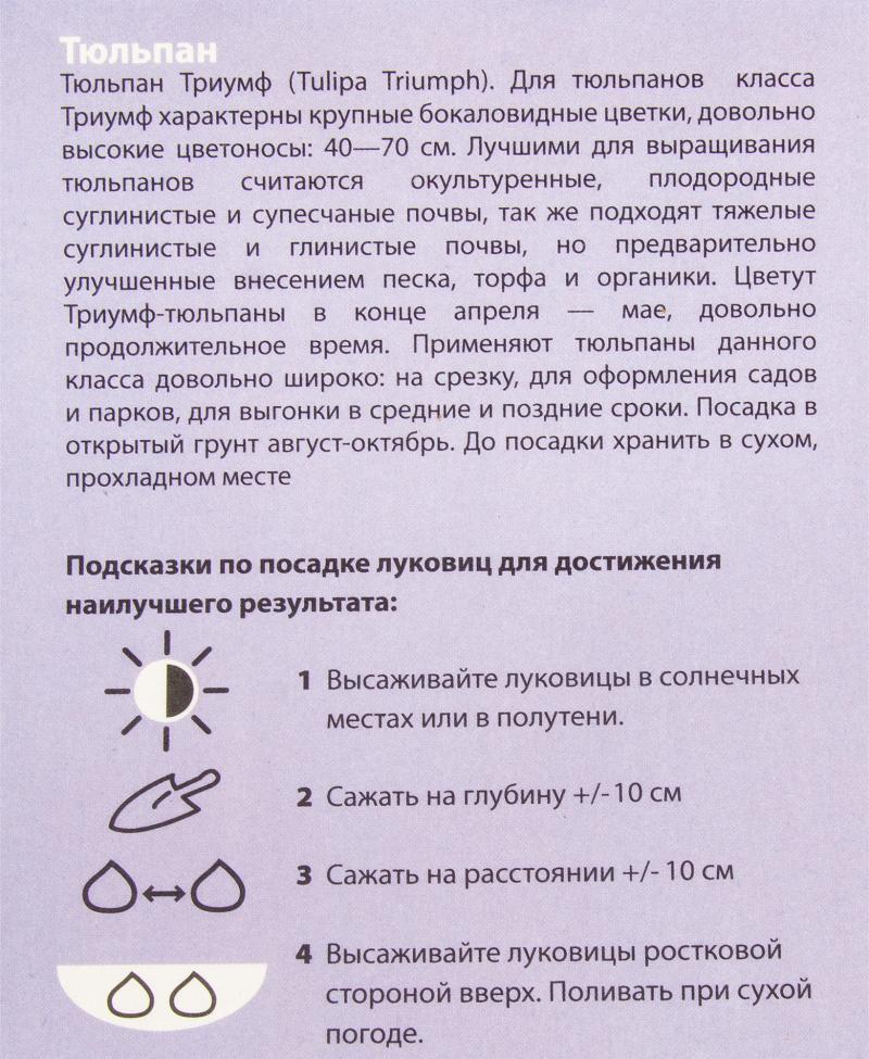 Тюльпан смесь «Триумф», размер луковицы 11/12