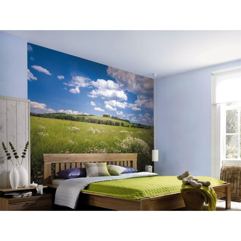 Фотопанно бумажное «Meadow» 368х254 см