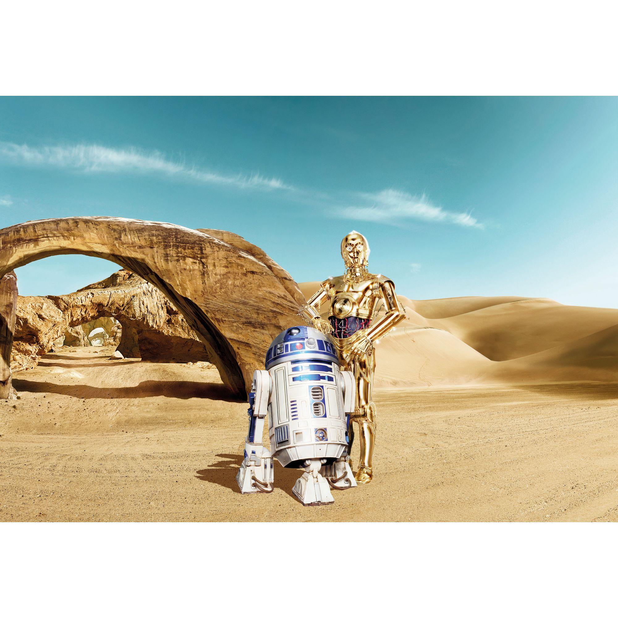 Фотопанно бумажное «Star Wars Droid» 368х254 см